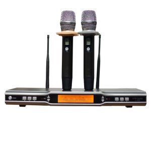 Micro không dây Star Sound S-9900